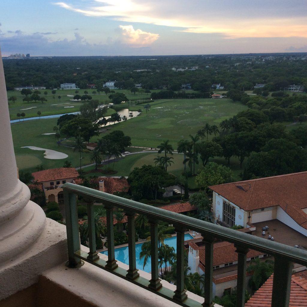 biltmore hotel view